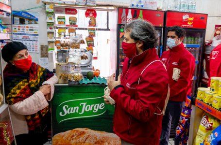 Ñuble se prepara para la entrada en vigencia de la Ley que prohíbe la entrega gratuita de bolsas plásticas