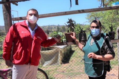 Vecinos de sector rural de Quillón aprenden secado de plantas medicinales y frutas