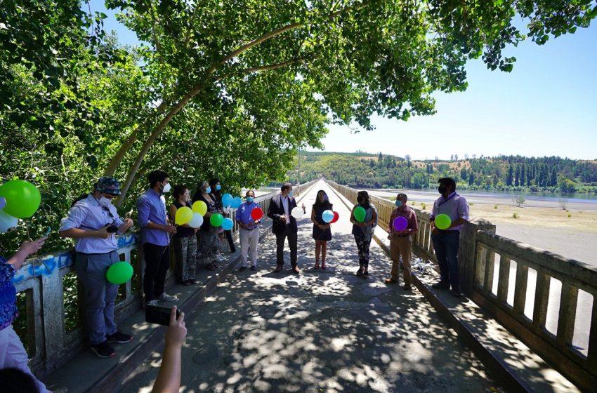 Puente Ñipas se transforma en el primer Monumento Histórico desde que Ñuble es región